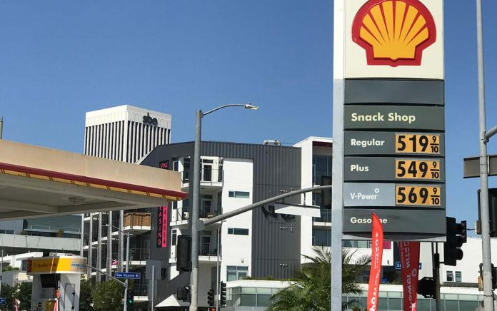 Surviving $5/gal Gas and Beyond